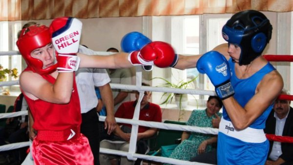 турнир по боксу в Лебедяни