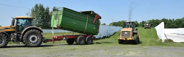 заготовка кормов в Лебедянском районе