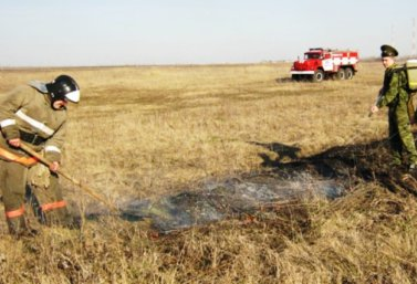 пожарные на тушении сухой травы