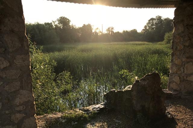 Кузнецкий пруд в Лебедяни летом