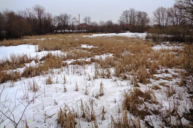 Кузнецкий пруд в Лебедяни весной 2019 года
