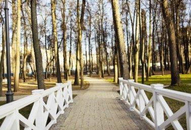 благоустройство парка