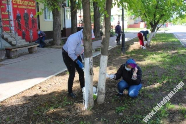 побелка деревьев в Лебедяни