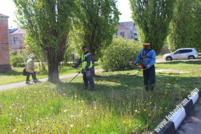 стрижка газона в Лебедяни