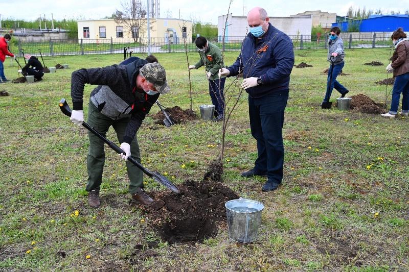 Сад памяти заложили в городе Елец