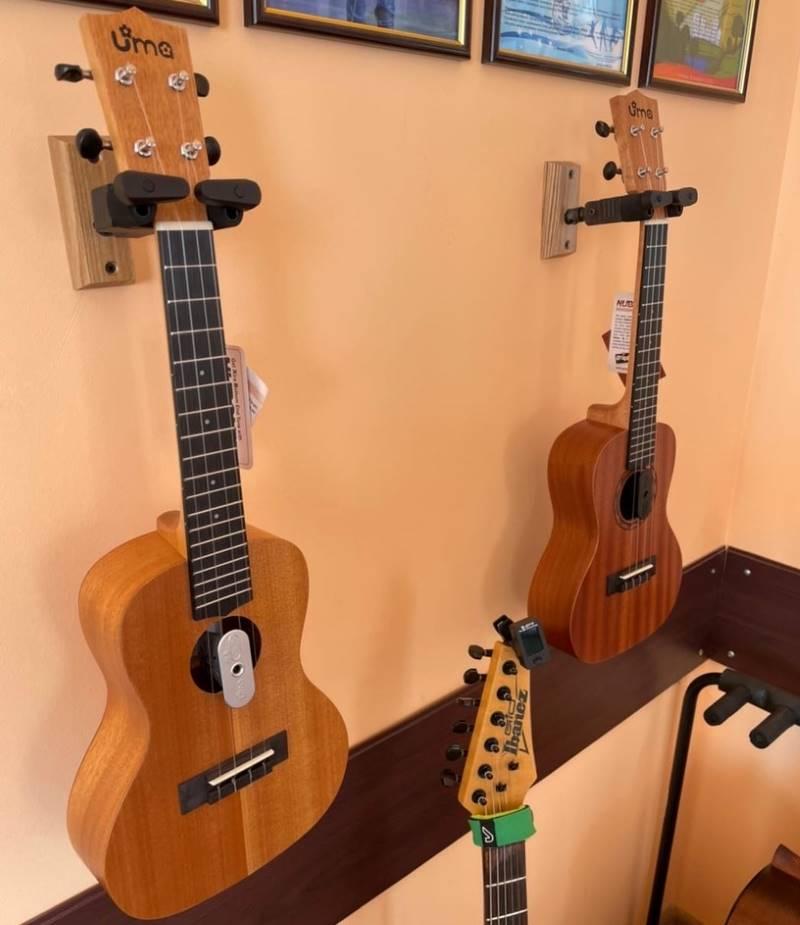 В Лебедяни будут обучать игре на укулеле