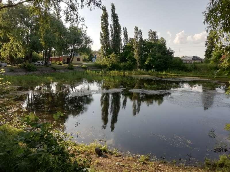 Стрелецкий пруд в Лебедяни