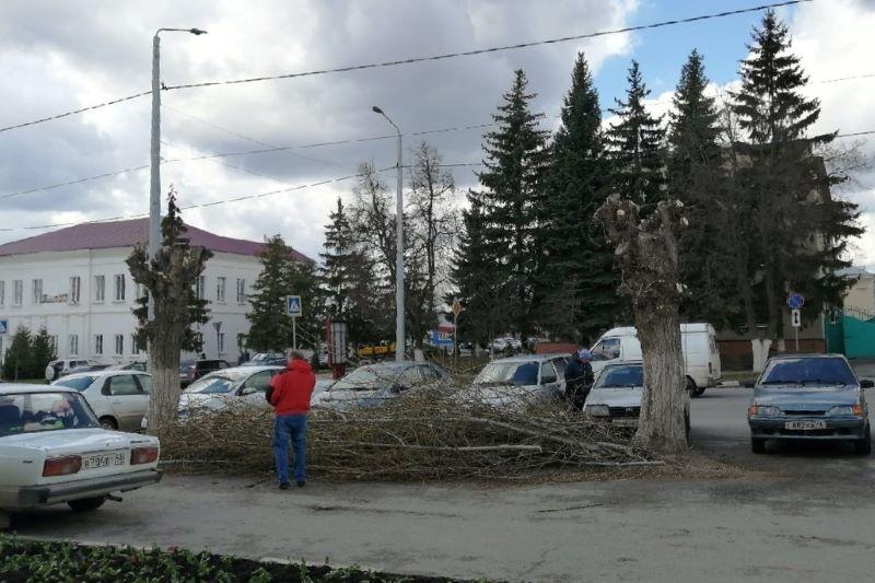 Обрезка деревьев в Лебедяни