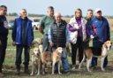 Выставка охотничьих собак прошла в Лебедяни